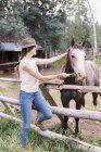 Жінка годує кінь — стокове фото