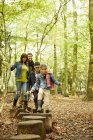 Beech woods in Autumn — Stock Photo
