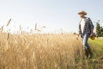 Bauer stehen in einem Weizenfeld — Stockfoto