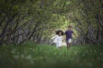 Enfants qui courent le long du tunnel de branche d'arbre — Photo de stock