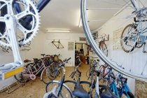 Bicycle shop, stocked with sports bikes — Stock Photo