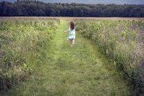 Дівчина проходить через луг — стокове фото