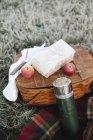 Взимку пікнік, яблука і загорнуті торт — стокове фото