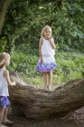 Two young girls in forest — Stock Photo
