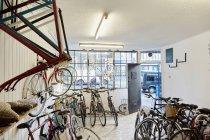 Магазин велосипедов, заполненный спортивными велосипедами — стоковое фото
