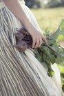 Fille en jupe rayée récolte betteraves — Photo de stock