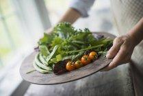 Plateau de légumes, les tomates et les verts — Photo de stock