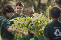Children learning about plants and flowers — Stock Photo