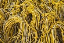 Cuerda amarilla enrollada - foto de stock