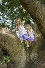 Two girls climbing a tree — Stock Photo