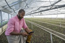 Man in a plant nursery with digital tablet. — Stock Photo