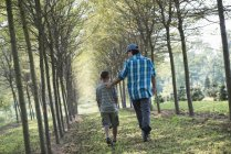 Uomo e ragazzo che cammina sul viale di alberi. — Foto stock