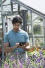 Man working in a plant nursery — Stock Photo