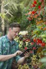 Man using a digital tablet in greenhouse — Stock Photo