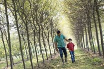 Man and boy walking on avenue of trees. — Stock Photo