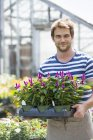 Man working in an organic nursery — Stock Photo