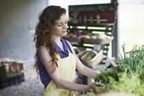 Frau Gemüse sortieren — Stockfoto