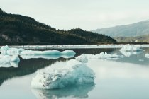 Icebergs floating off the shore — Stock Photo