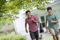 Boys in a farmhouse garden — Stock Photo