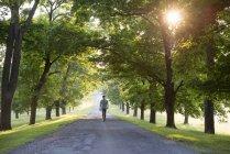 Homme qui marche dans une avenue bordée d'arbres — Photo de stock