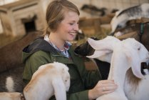 Woman in a stable with goats. — Stock Photo