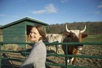 Женщина кормит двух коров . — стоковое фото