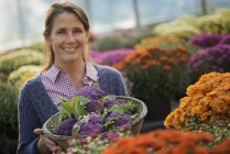 Woman holding purple sprouting broccoli. — Stock Photo