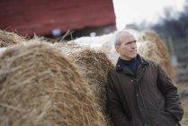 Organic farm in winter — Stock Photo
