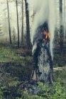 Під контролем лісу спалювати — стокове фото