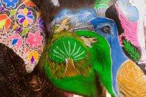 Богато украшенные слоны во время Холи — стоковое фото