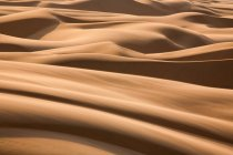 Namib Desert dunes — Stock Photo