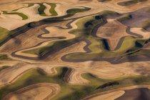 Сільгоспугідь пейзаж з розорана поля — стокове фото