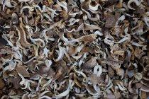 Палі грибів на ринку — стокове фото