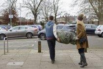Dos personas llevando árbol de Navidad - foto de stock