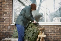 Man trimming end off Christmas tree — Stock Photo