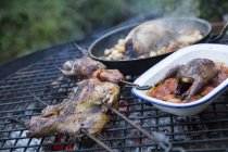 Two small game birds in a pan — Stock Photo