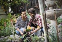 Couple planting flowers. — Stock Photo