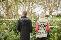 Uomo e donna che sceglie l'albero di Natale — Foto stock
