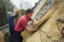 Мужчины, чистившие крышу — стоковое фото
