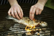 Grilling  fish on a barbecue. — Stock Photo