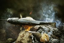 Whole fish on barbecue. — Stock Photo