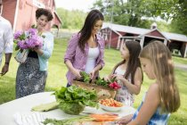 People preparing meal of fresh picked salads — Stock Photo