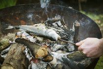 Chef grilling a whole fish — Stock Photo