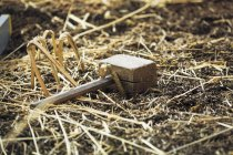 Wooden mallet lying on straw — Stock Photo