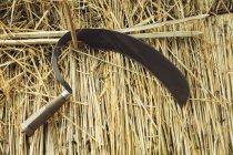 Shearing hook on straw — Stock Photo