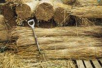 Связки соломы для соломы — стоковое фото