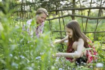 Mother and daughter picking flowers and plants — Stock Photo