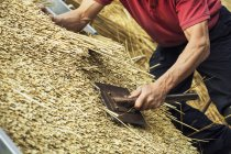 Man thatching roof — Stock Photo