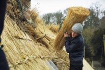 Тэтчер несет желток соломы — стоковое фото