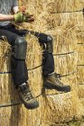 Тэтчер сидит на пучках соломы — стоковое фото